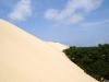 Mes vacances en camping sur la presqu'île de Lège-Cap Ferret