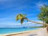 Organiser soi-même son séjour en Martinique: une bonne idée ?